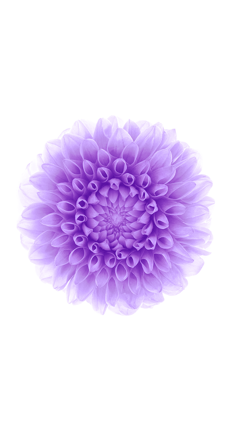 New IOS 8 Wallpapers Available To Download