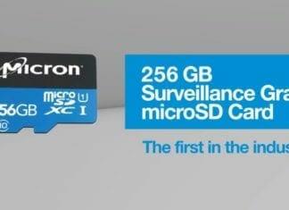 Micron Memory Cards 256GB