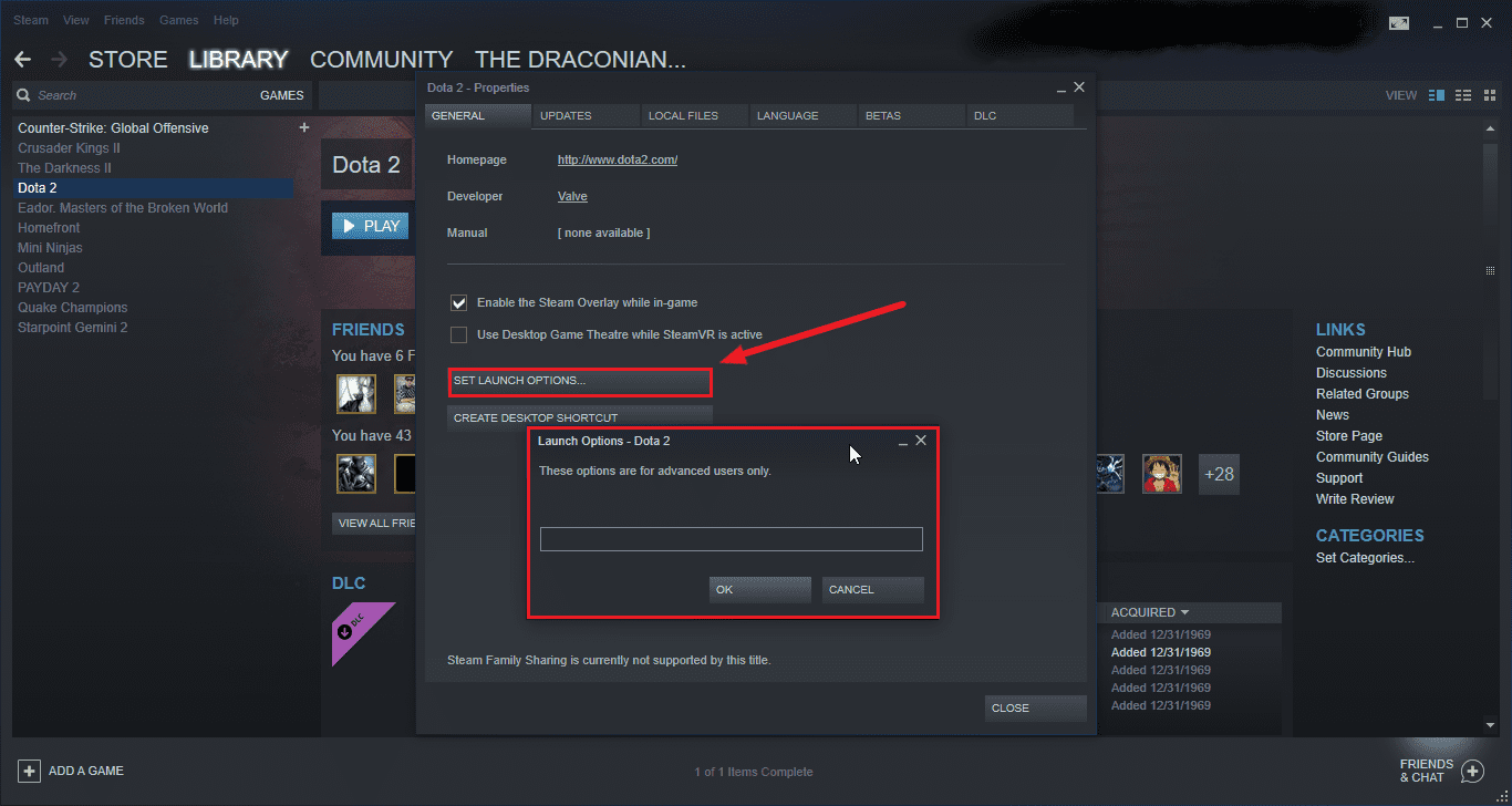 The best set launch option for dota2