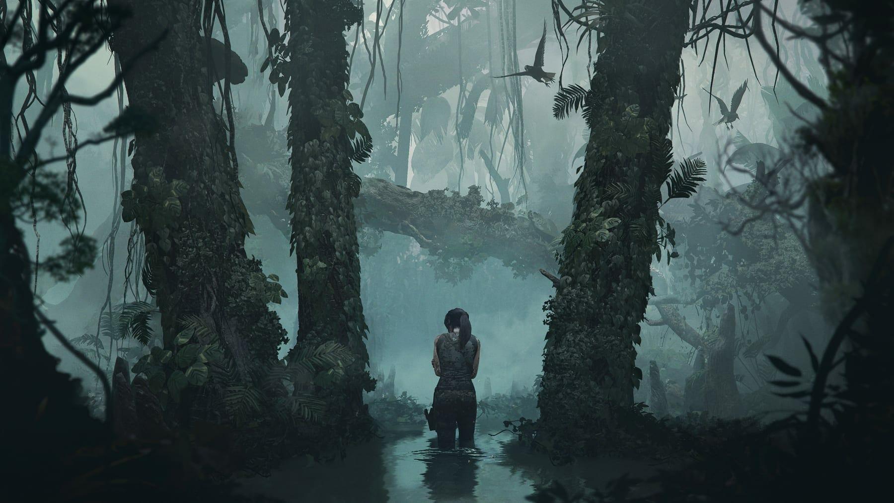 dims - New Hotfix fixes Shadow of the Tomb Raider Crash on Nvidia RTX Graphics Card