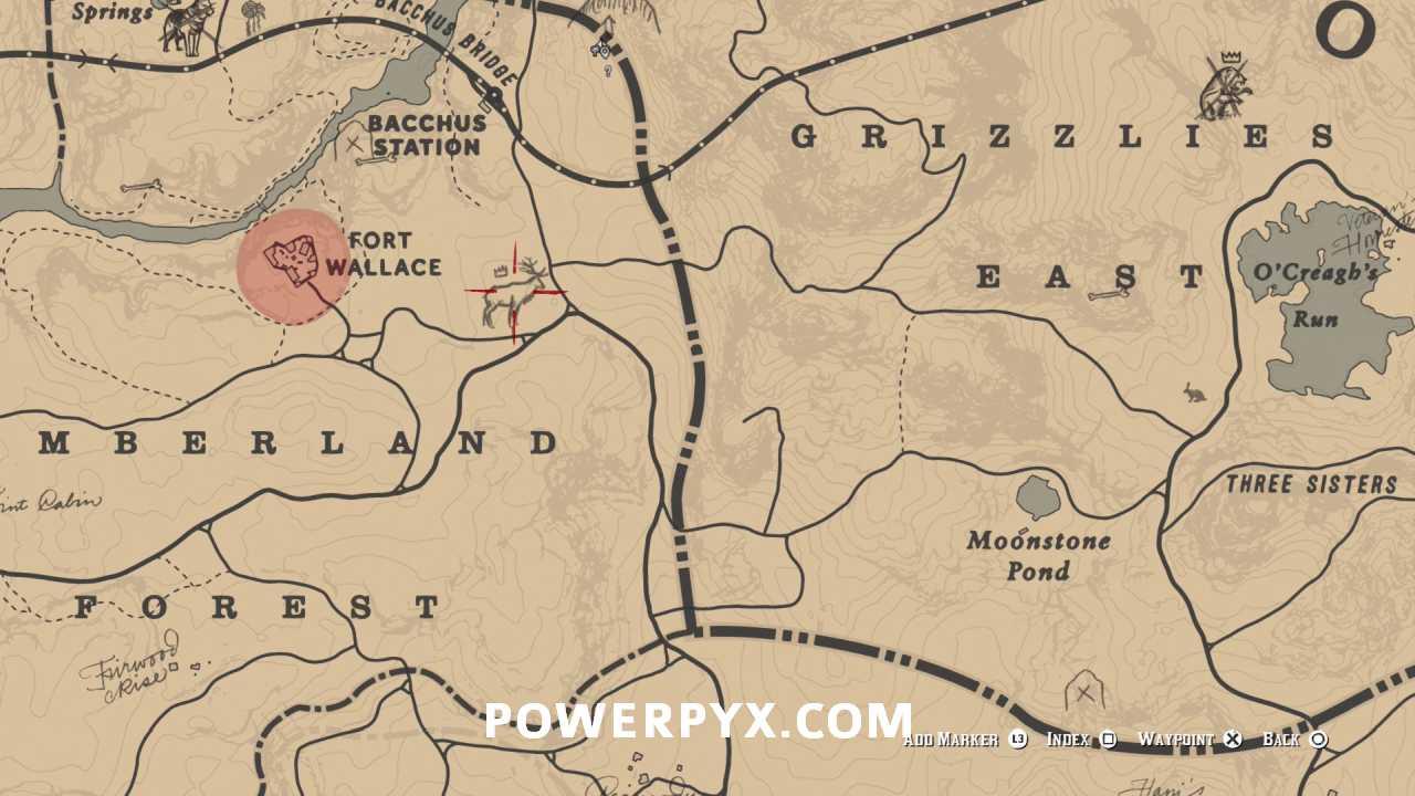 Legendary Elk Location