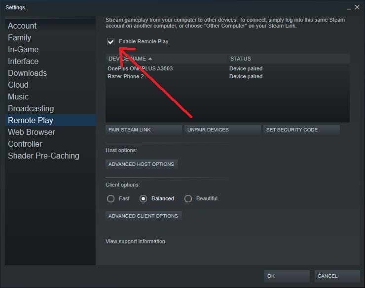 Steam Remote Play