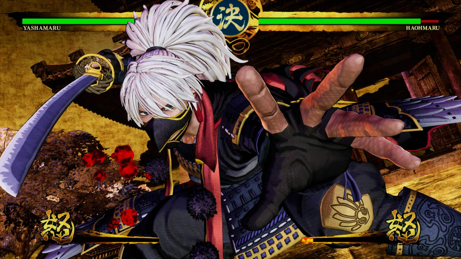 Change Samurai Shodown Resolution