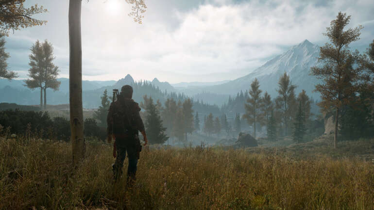 Days Gone Save-Game Files